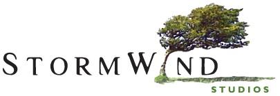 Stormwind Studios Logo